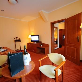 pokoj-hotel-maxim-kwidzyn-9